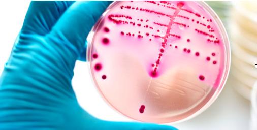 Inflamația articulațiilor streptococului, Ce sunt reumatismele?