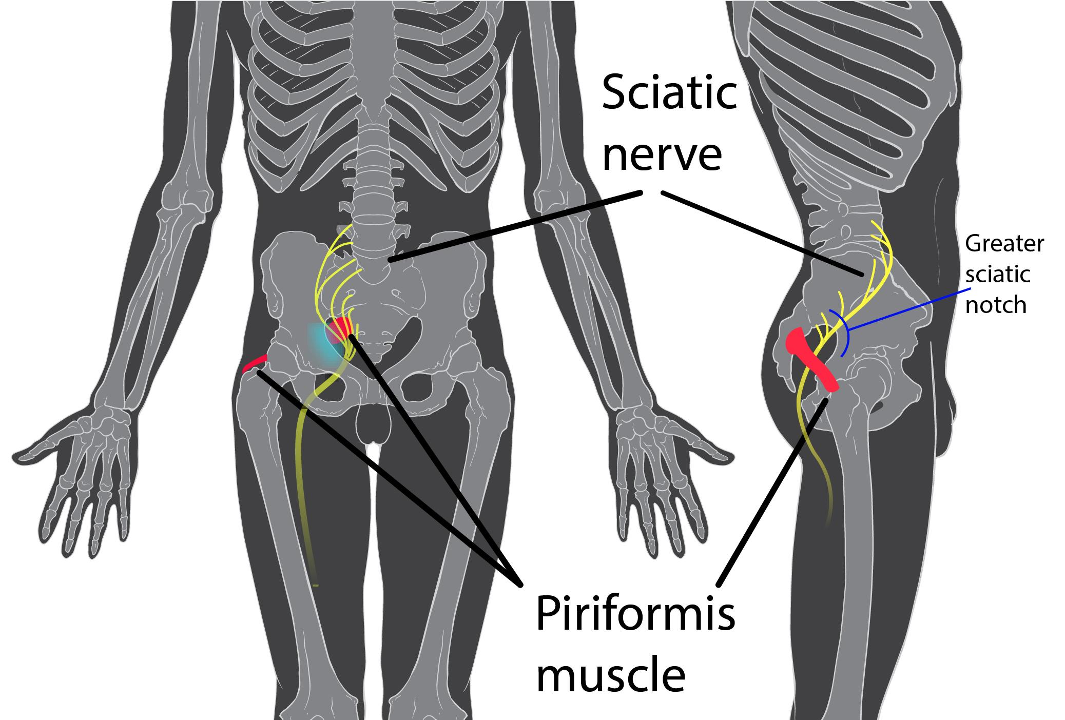 ce fel de boală a articulațiilor șoldului