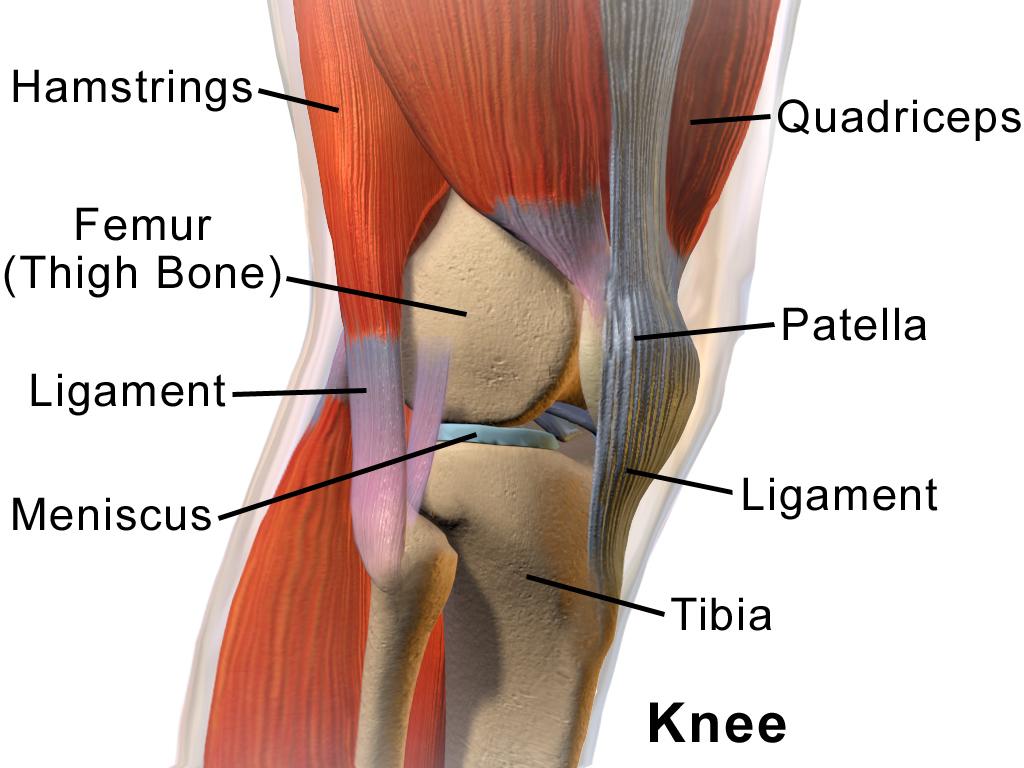 frecarea articulațiilor genunchiului