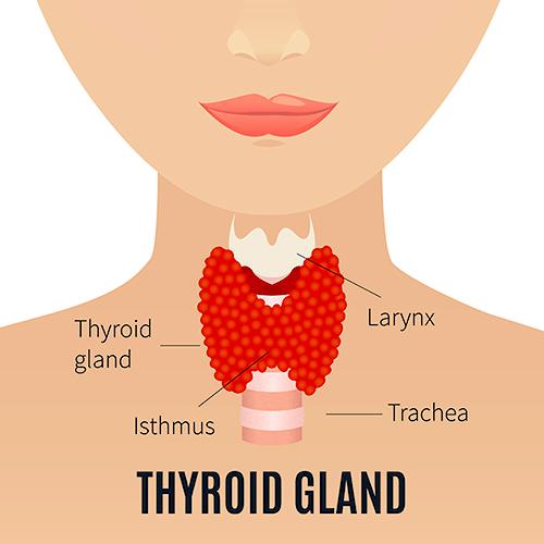Dureri articulare simptome tiroidiene piciorului