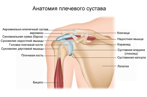 simptome și tratament la genunchi ciupit semn de durere de umăr