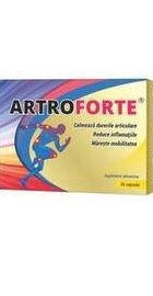 medicament pentru articulații arkoksiya