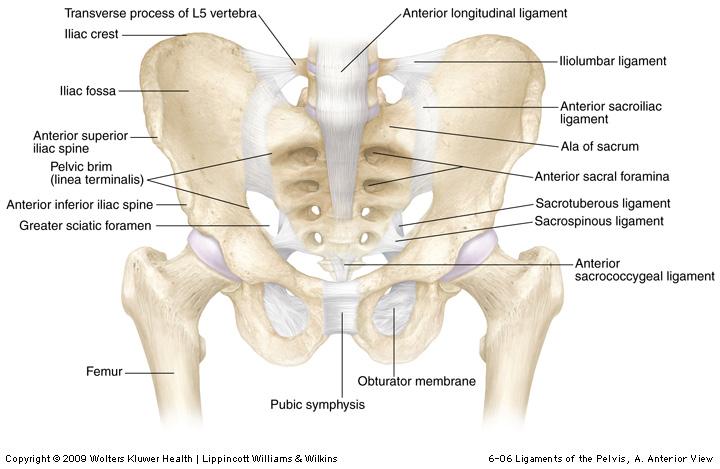 îndepărtarea durerii în articulația șoldului