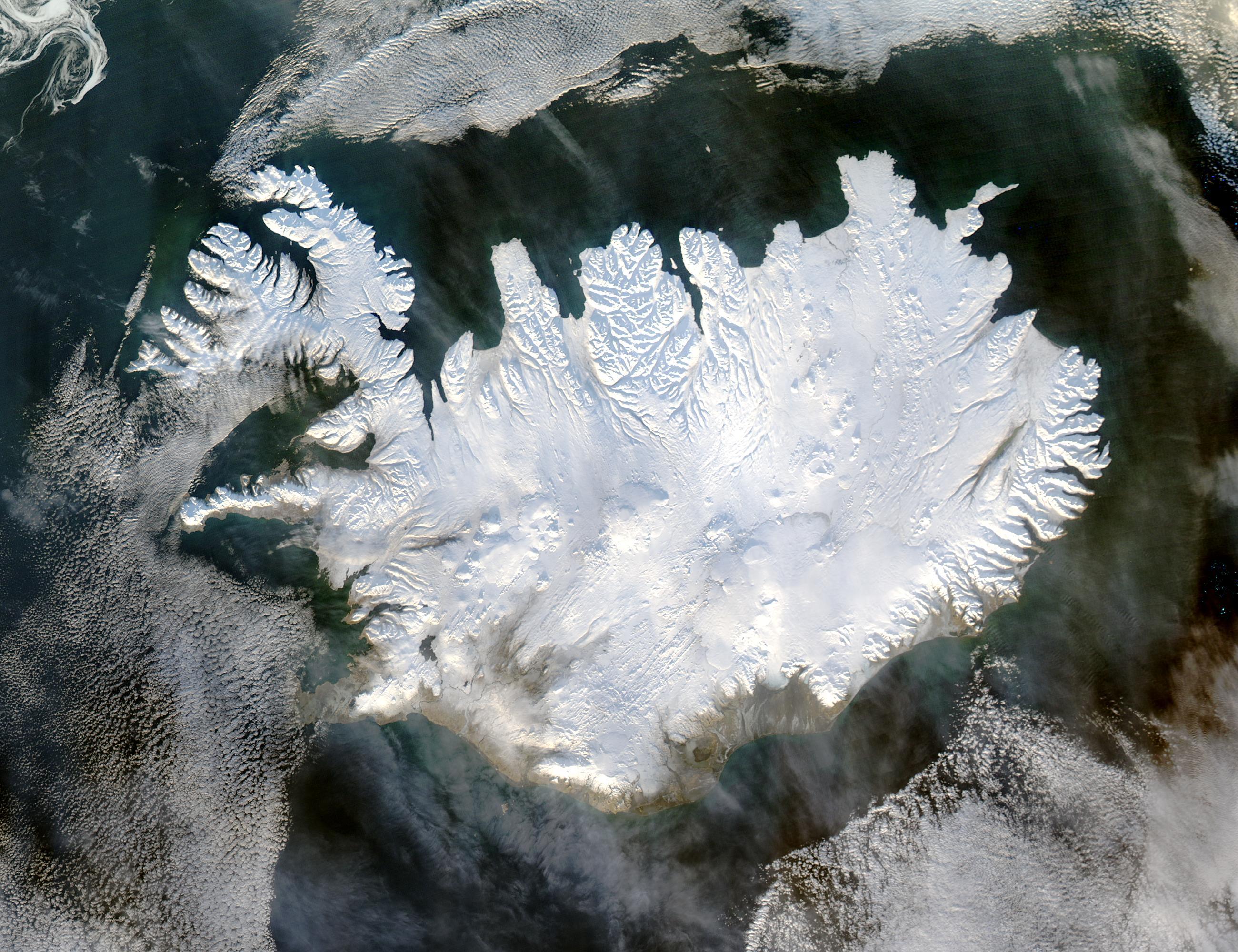 Tratamentul comun al Islandei tratamentul artrozei fermatron plus