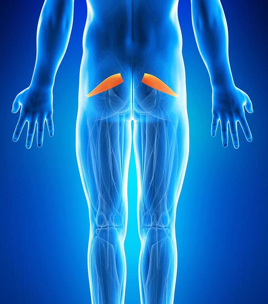 Atentie: durere în coapsa stângă și genunchi Leziunile