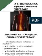 coloană vertebrală și articulații umflarea brațelor picioarelor și dureri articulare