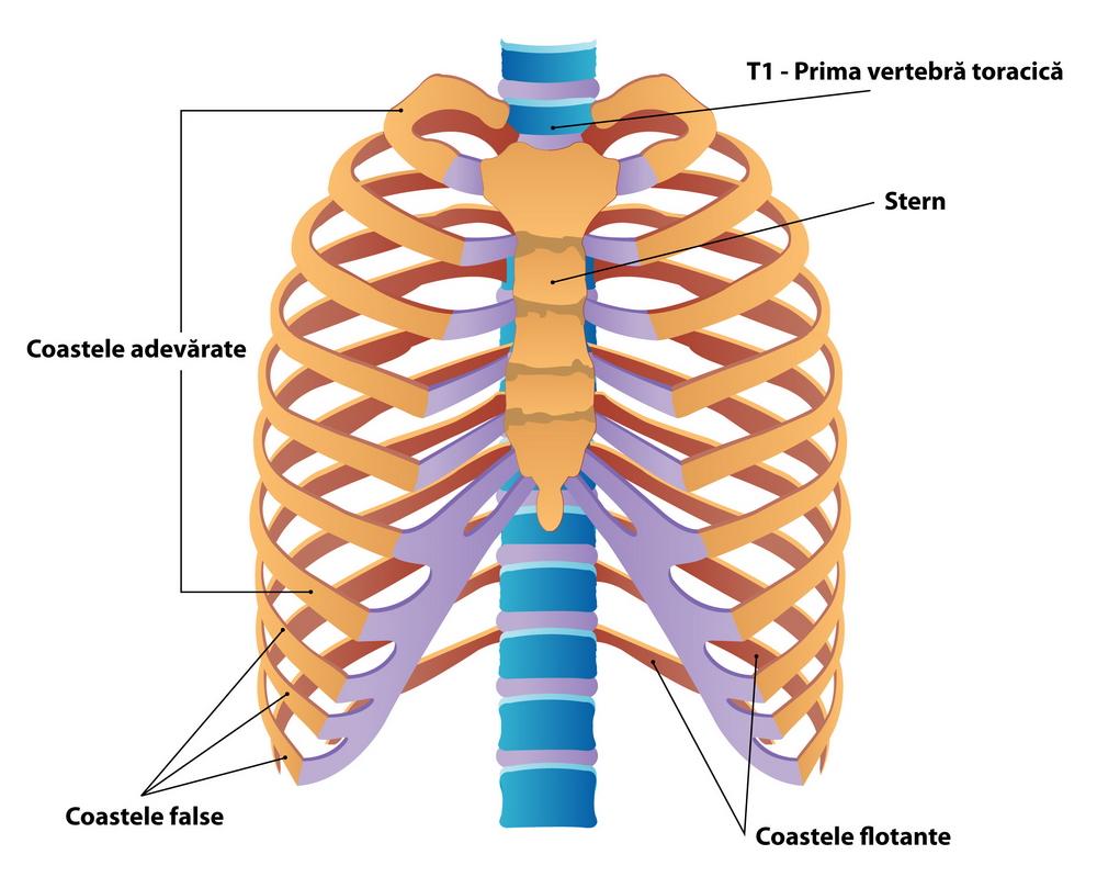 tratarea cu azot lichid a articulațiilor