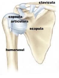 Durere lângă articulația umărului mâinii stângi.