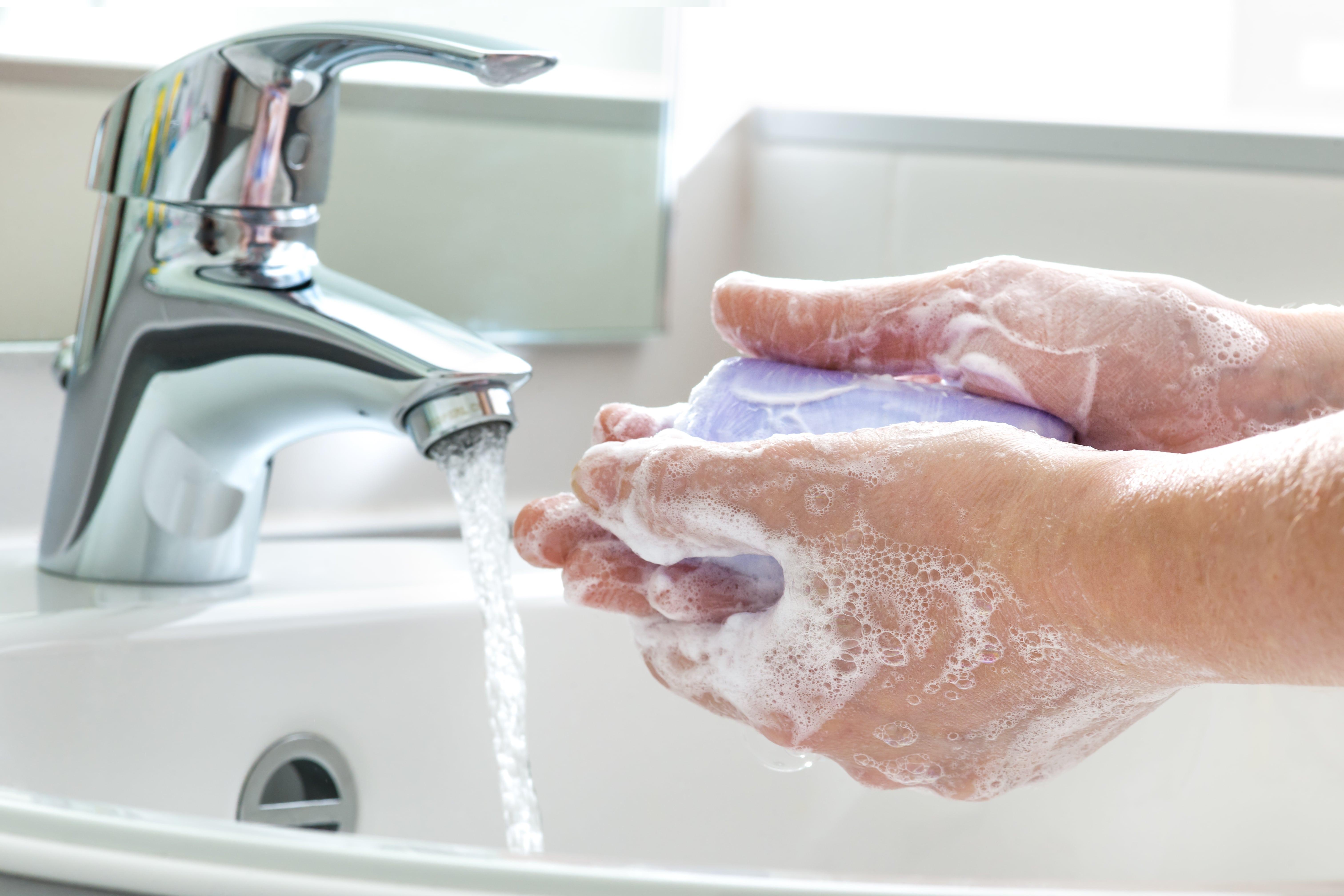 Salmoneloza - infectia cu bacteria Salmonella