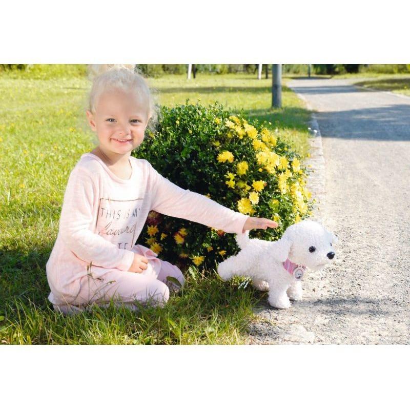 Engleză Toy Terrier sau Pinscher miniatural, care face cel mai bun companion?