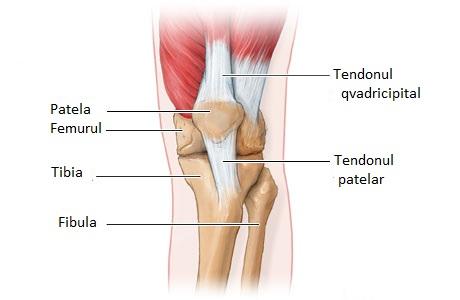 inflamație post-traumatică a articulațiilor tratamentul artrozei piciorului în spital