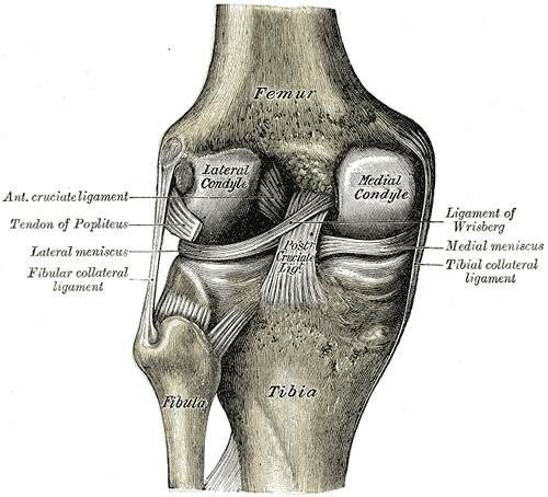 articulațiile se umflă roșu rănit artroza femoropatelară a genunchiului