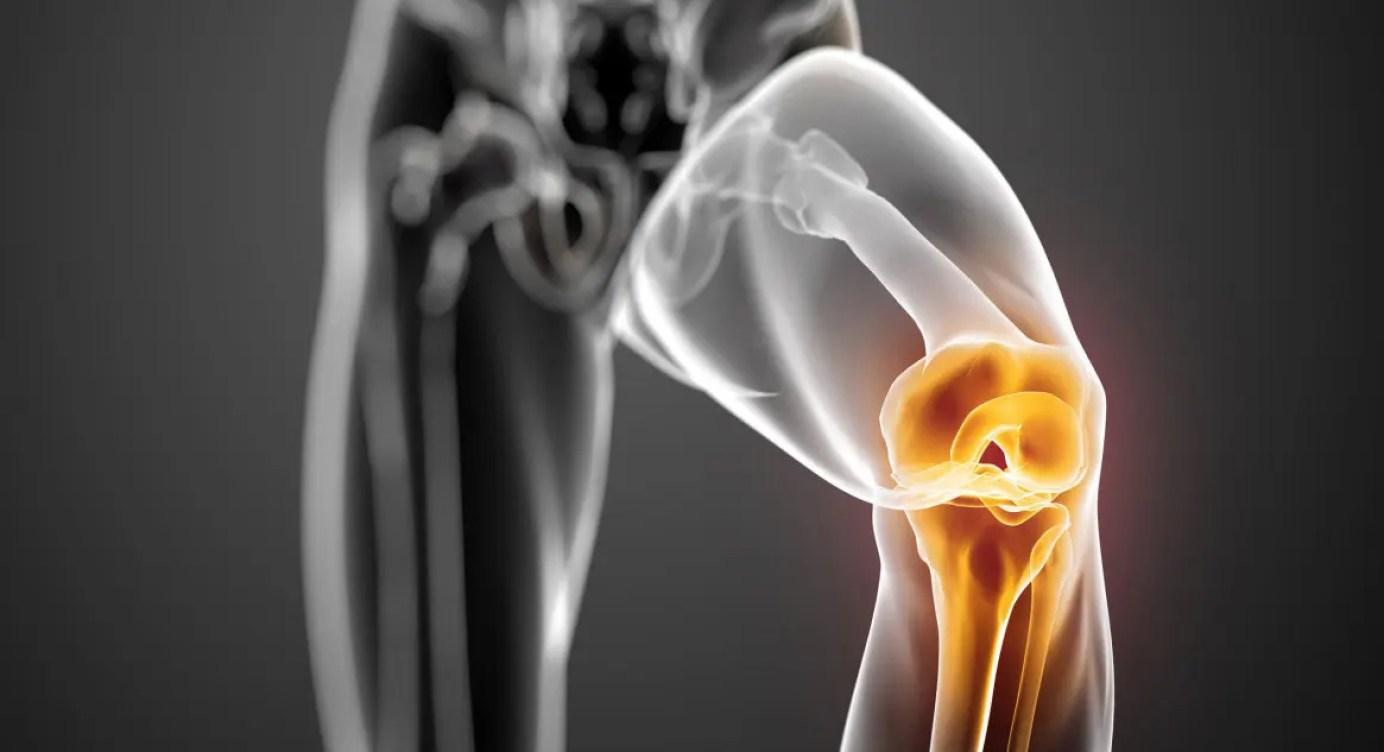articulația roșie a genunchiului