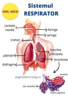 patol de boli de țesut conjunctiv cât timp este tratată artroza umărului