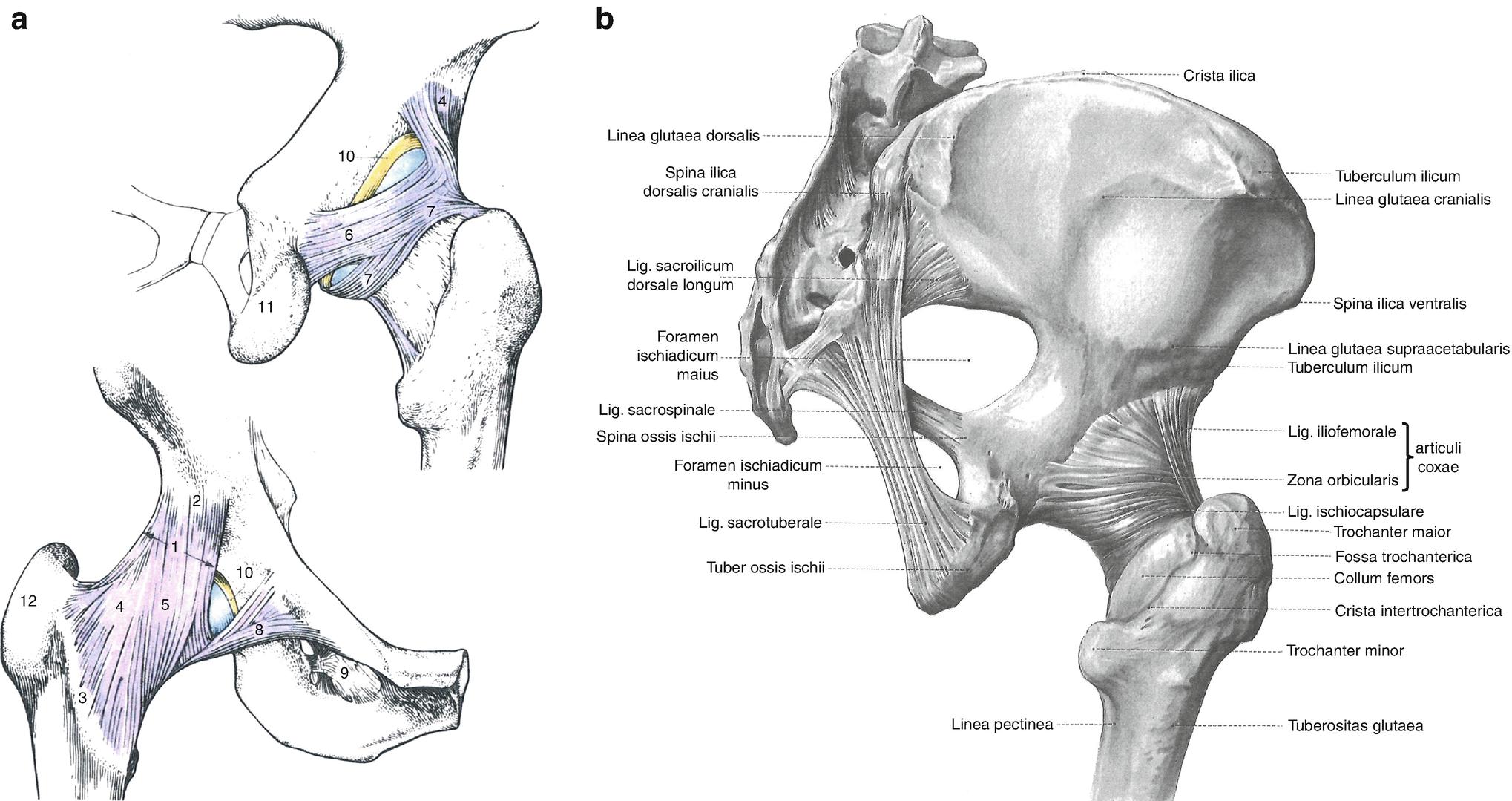 artrita reumatoidă a articulațiilor mici ale tratamentului mâinilor cum să tratezi articulațiile genunchilor cu noile tehnologii