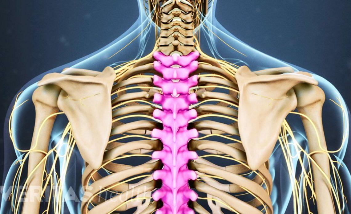 unde să tratezi articulațiile coloanei vertebrale