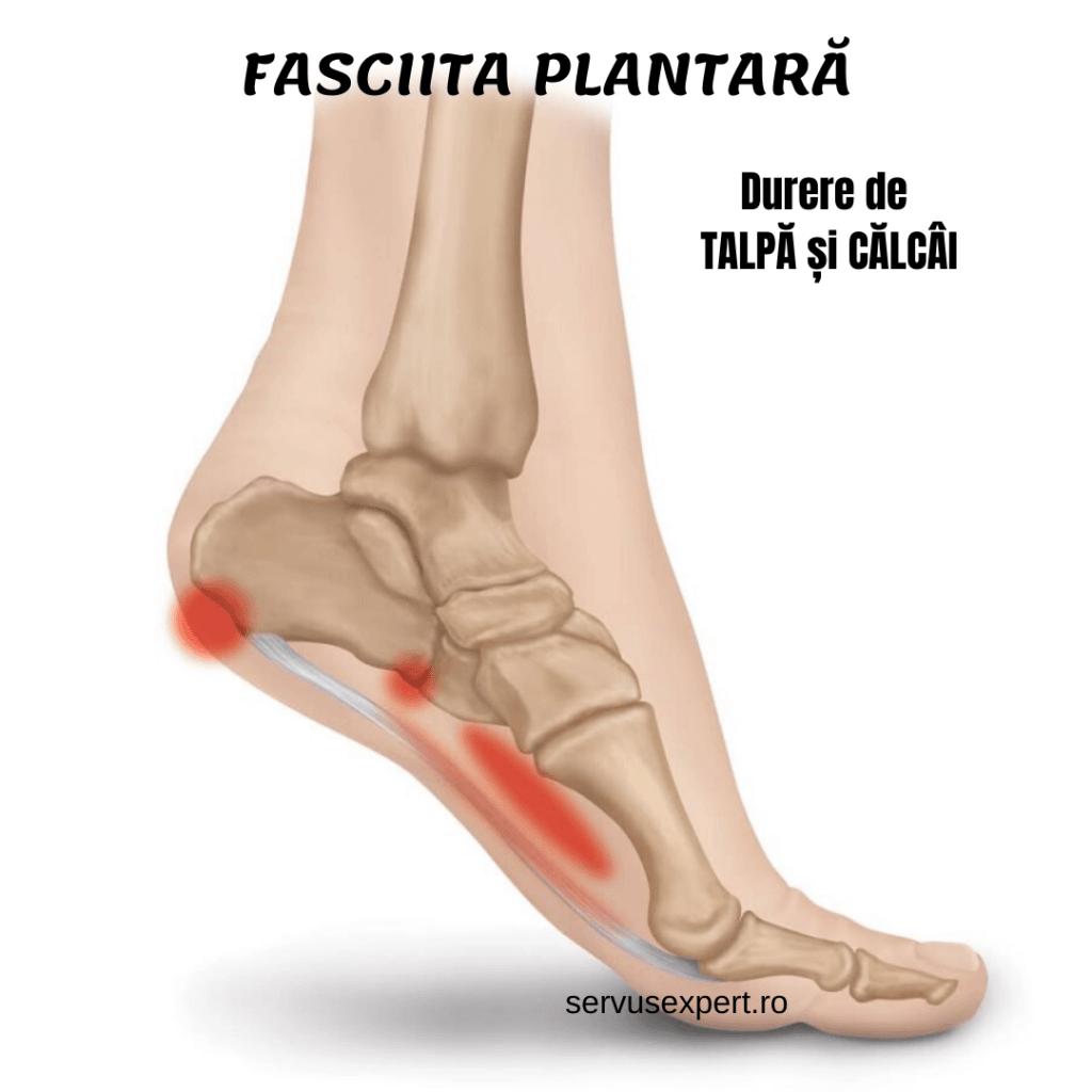 durere în zona articulației piciorului
