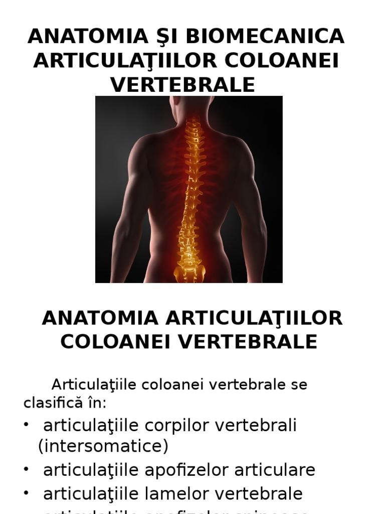 tratarea coloanei vertebrale și a anastaziei articulațiilor semenova dureri articulare ale degetului mare cauzează