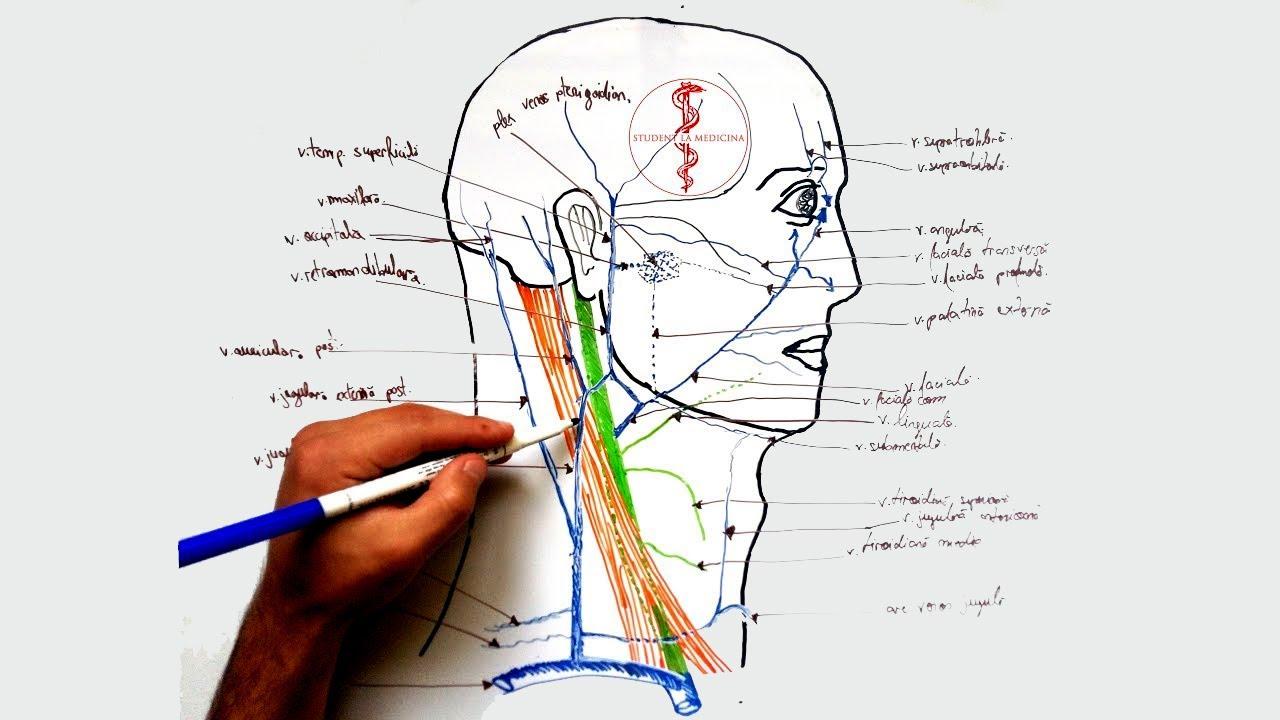 osteocondroza articulației cotului 1 grad