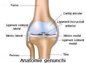 Prim ajutor pentru leziuni la genunchi, Durerea de genunchi: simptome, cauze, tratament