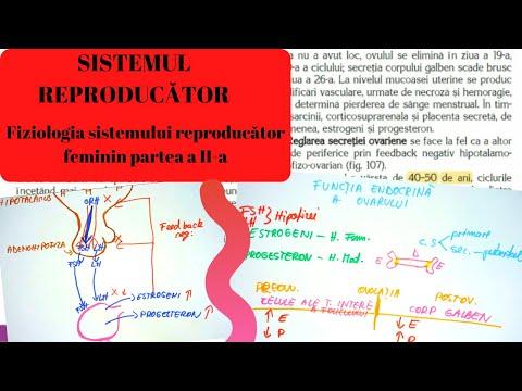 schema de tratament a articulațiilor umărului boală de țesut conjunctiv