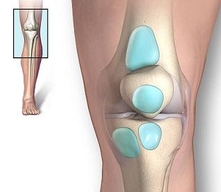umflarea genunchiului fără durere este posibil să restabiliți cartilajul în articulații